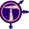 Exigimos la adecuación de la legislación española a la transexualidad nopatologizada