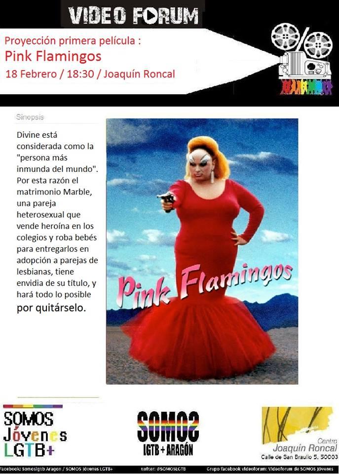 SOMOS Jóvenes nos invita a participar de su cinefórum mensual. El 18 de febrero, PinkFlamingos
